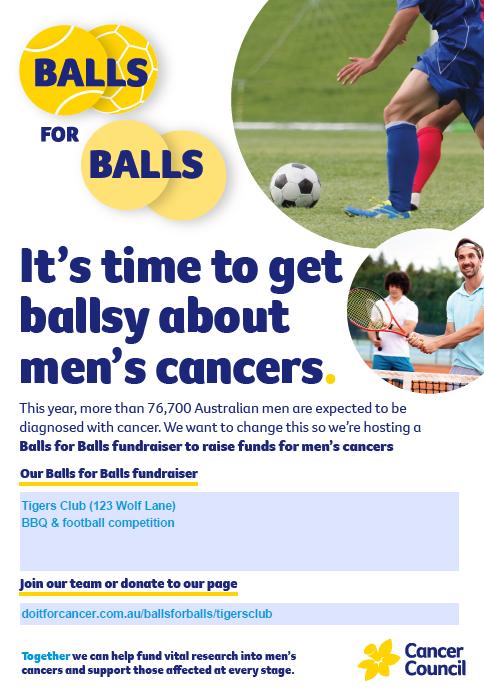 Balls for Balls Fundraiser Poster A3_editable